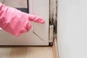 Can a one-time water leak cause mold